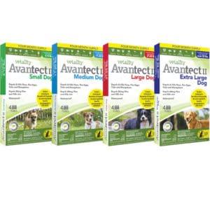 avantect-4-pack