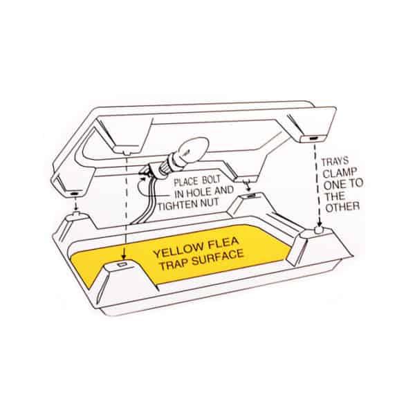 flea-beacon-flea-trap-2