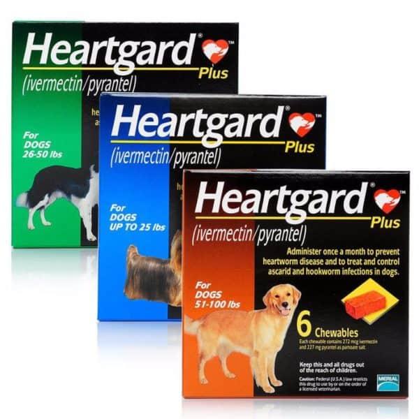 heartgard-plus-dogs