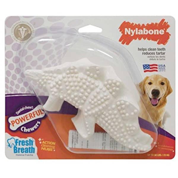 nylabone-dental-dino-1