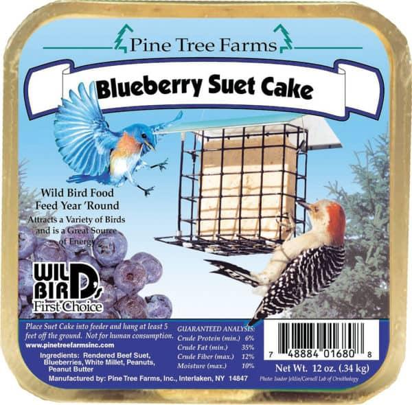 blueberry-suet-cake
