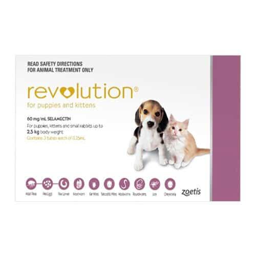 revolution-puppy-kitten