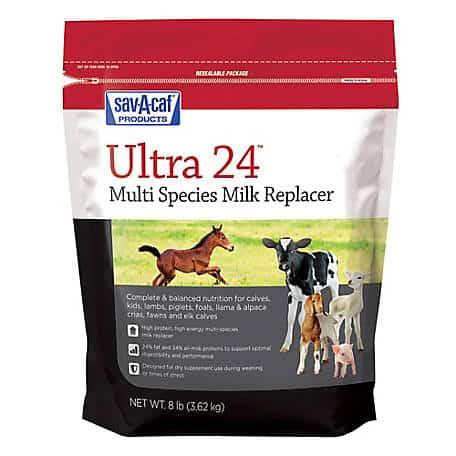 sav-a-calf-milk-replacer-8