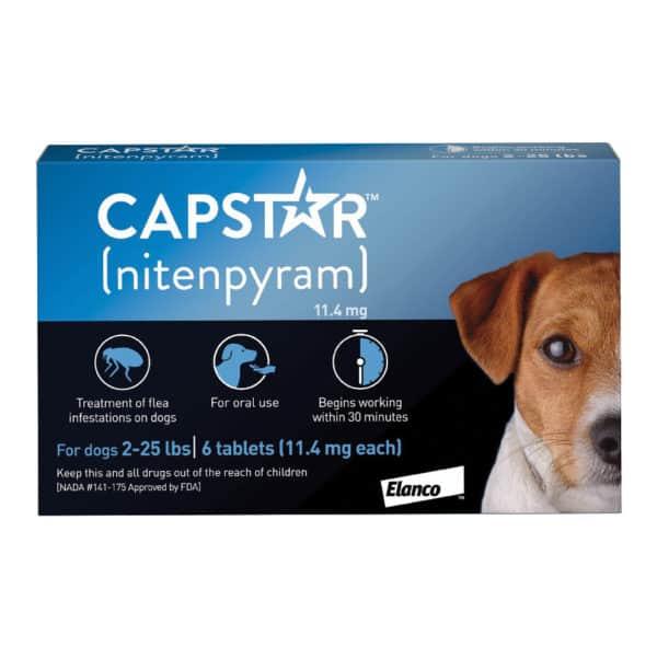 capstar-dog-2-25
