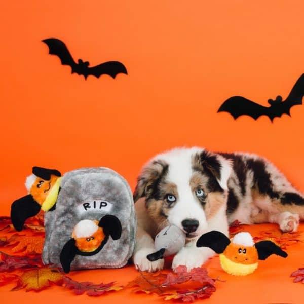 zippy-paws-halloween-spooky-gravestone
