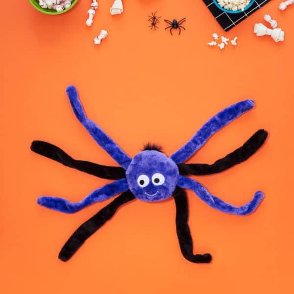 purple-spider-small