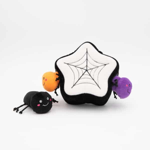 burrow-spider-web