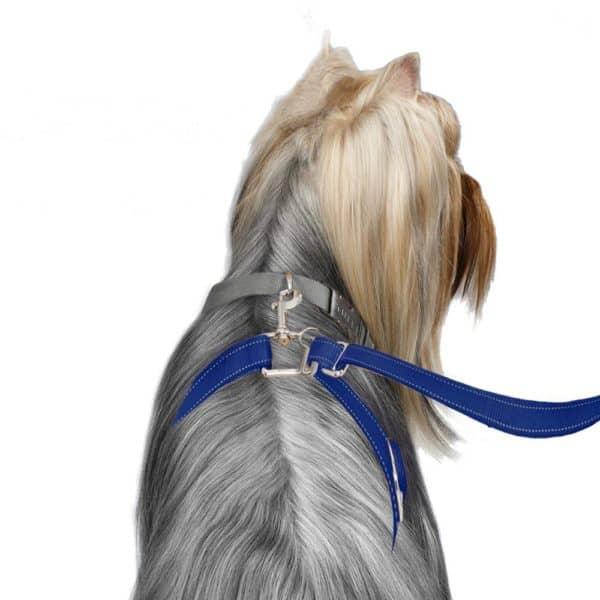 thunder-leash-medium-large-blue2