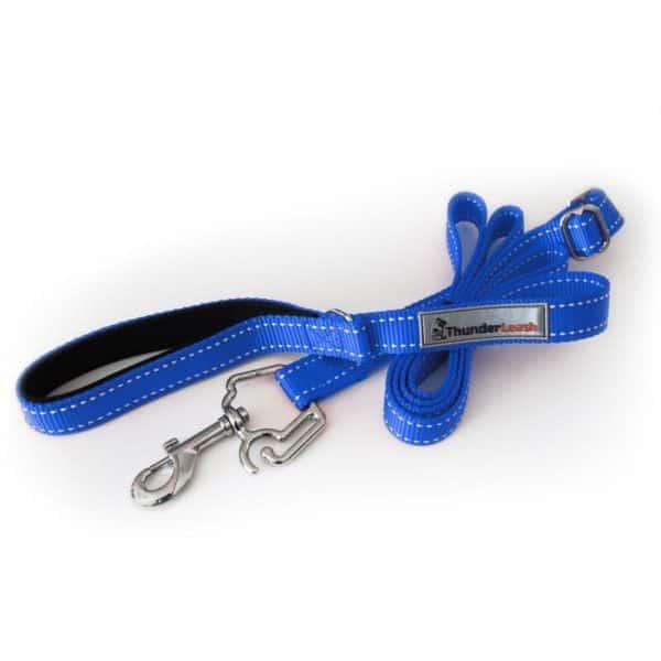 thunder-leash-medium-large-blue