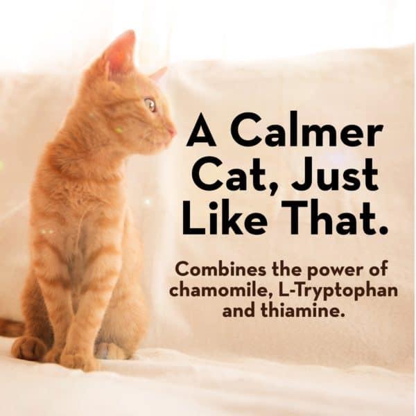 thunderwunders-calming-cat-chews-100ct4
