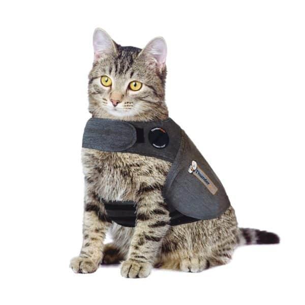 thundershirts-for-cats-large