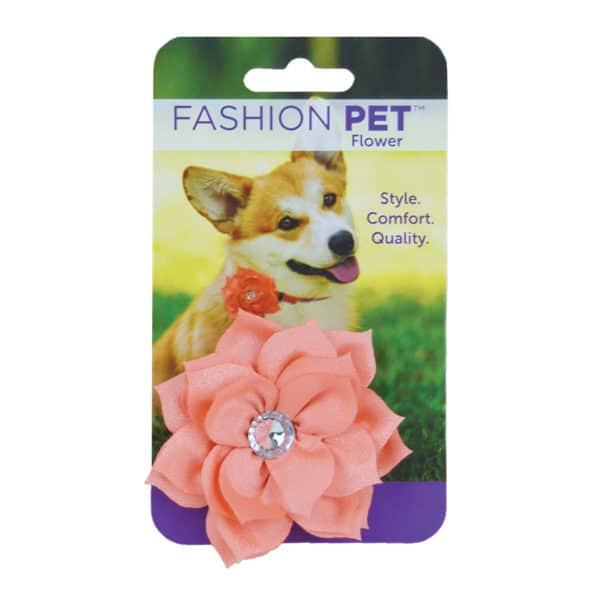 fashion-pet-flower-coral-posie-collar-accessory-md-lg-copy