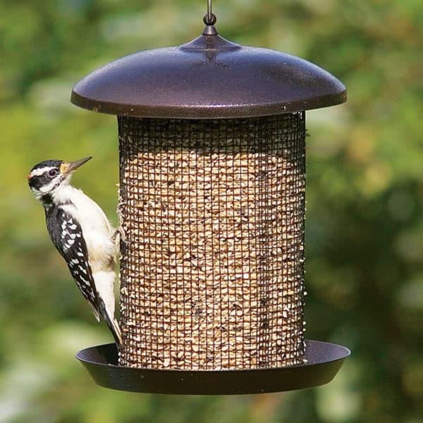 high-capacity-bird-feeder-2
