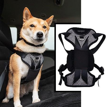 auto-harness-seat