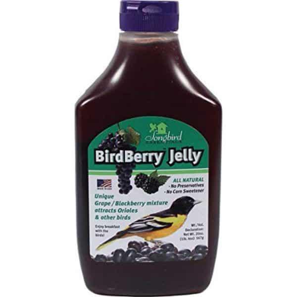 birdberry-jelly