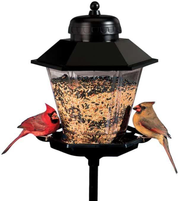 lamp-bird-feeder