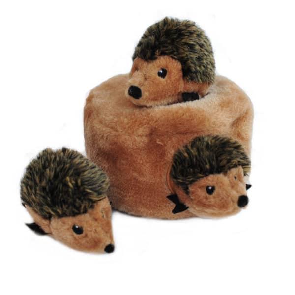 hedgehog-burrow