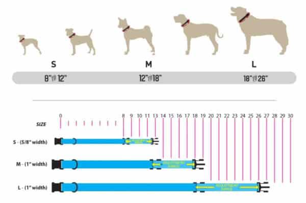 wolfgang-size-chart